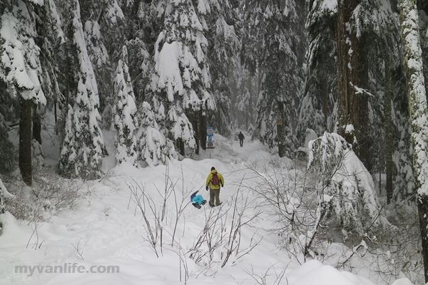 {溫哥華旅遊} 不讓愛莎獨享,溫哥華踩雪健行趣