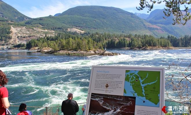 溫哥華旅遊|走近陽光海岸,聽見世界上最湍急的怪物漩渦